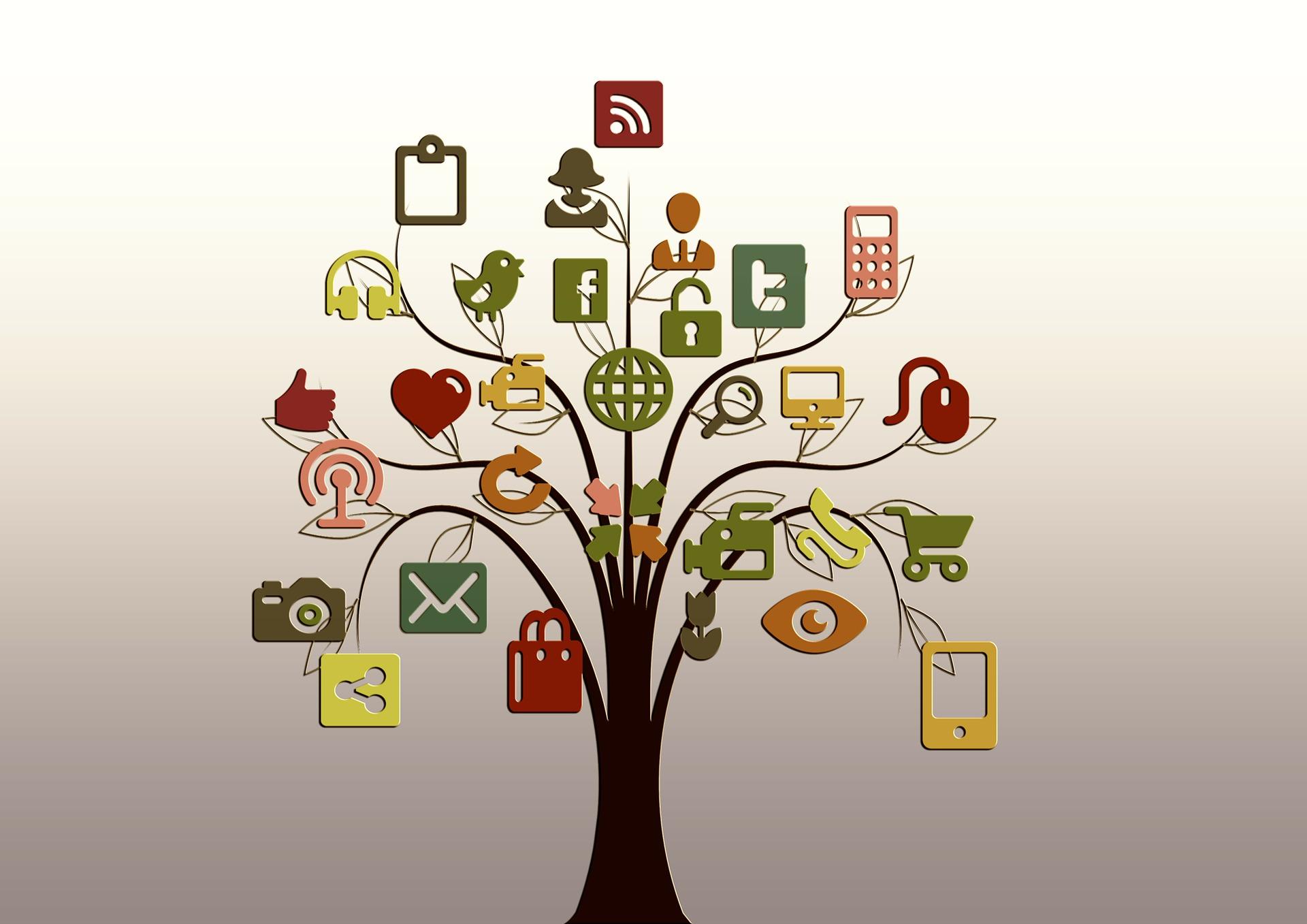Identity Matching tree.jpg