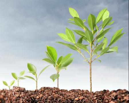 growing-customer-base